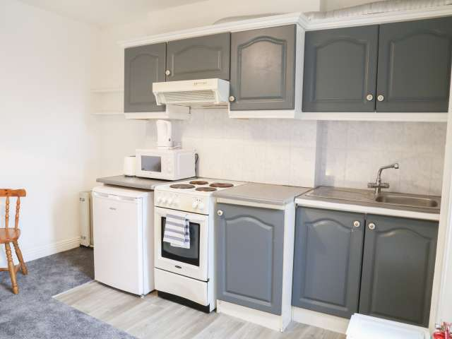 Apartamento de 1 dormitorio en alquiler en Drumbonda, Dublín