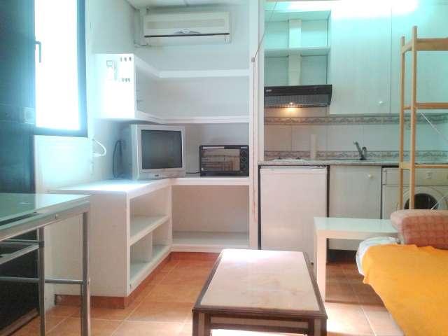 Cozy rented apartment in Villaviciosa de Odón, Madrid