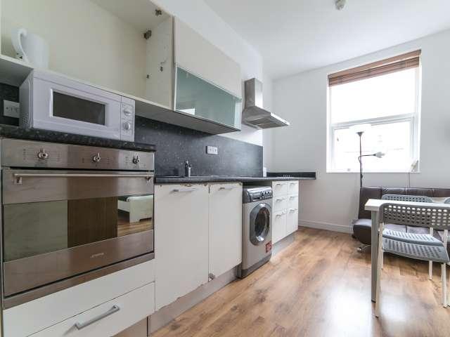 Modern studio flat for rent in Harlesden, London