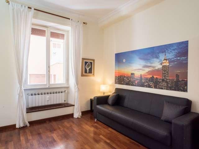 Spazioso monolocale in affitto a Balduina, Roma