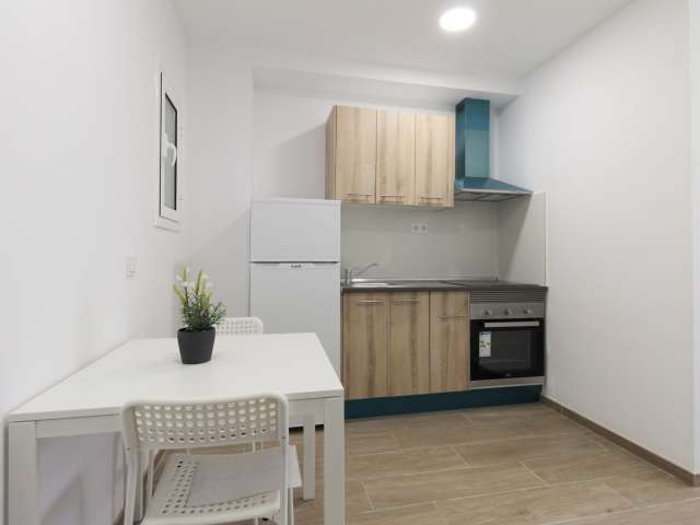 Nice studio apartment for rent in Sants, Barcelona