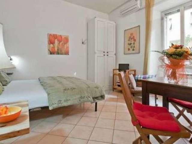 Studio in affitto a Gianicolense, Roma
