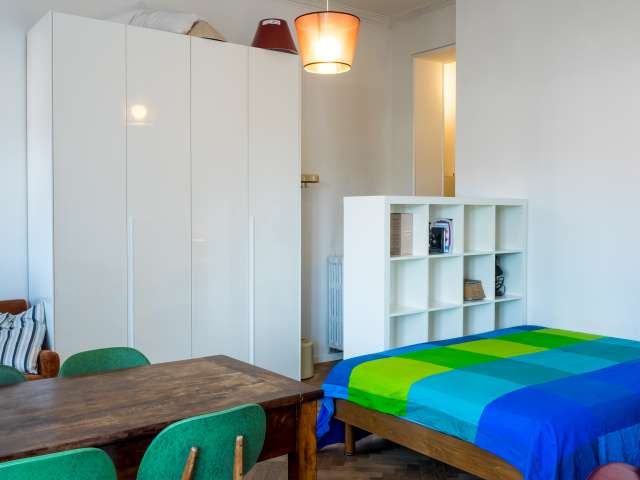 Bright studio apartment with AC for rent in Washington,Milan