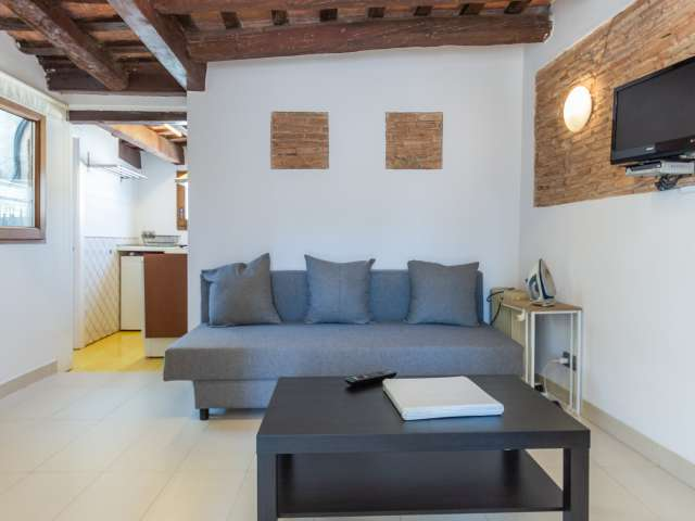 Chic 2-bedroom apartment for rent in Barri Gòtic, Barcelona