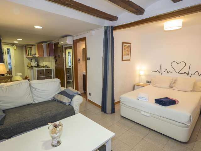 Studio apartment for rent in Sants, Barcelona