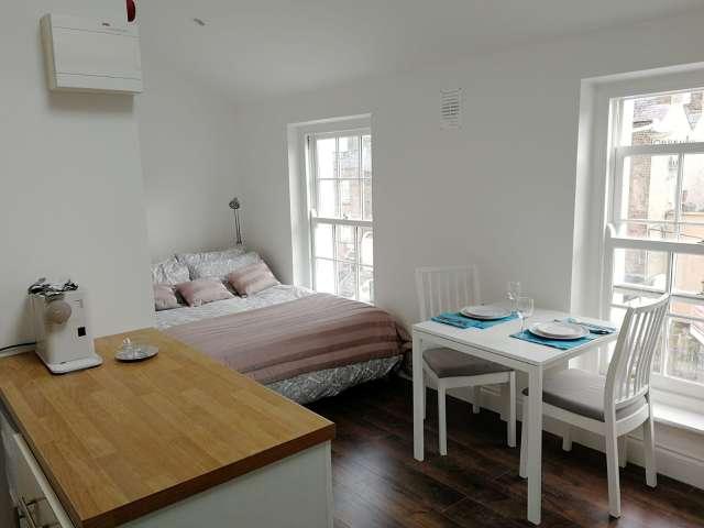 Bright tudio flat to rent in Rathmines, Dublin