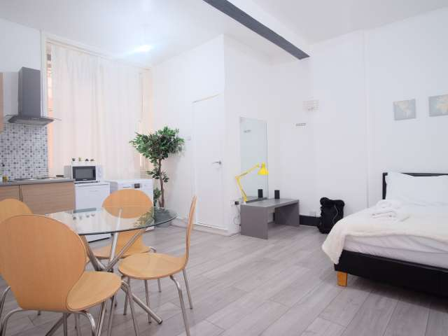 Chic studio apartment to rent in City of Westminster, London