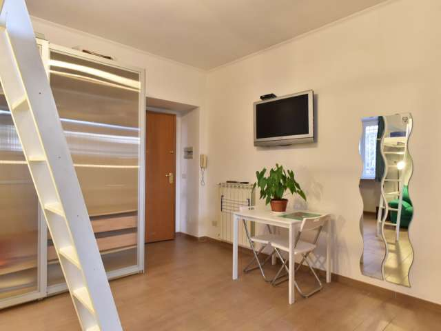 Monolocale arredato in affitto a Trieste, Roma