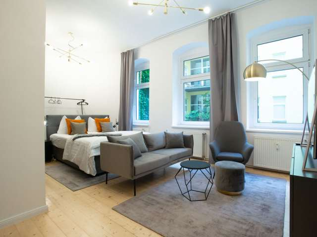 Attractive studio apartment for rent in Mitte, Berlin