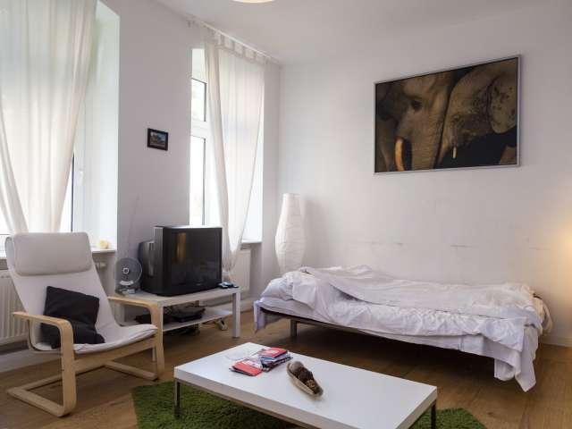Große 1-Zimmer-Wohnung zu vermieten, Mitte, Berlin