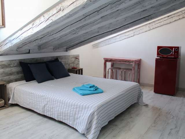 Charming studio apartment for rent in Madrid City Centre