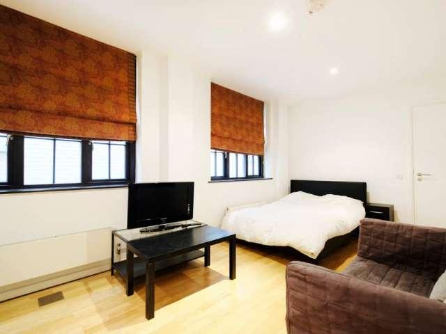 Studio flat to rent in Blackfriars, London