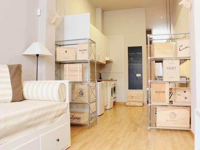 Studio for rent in Madrid