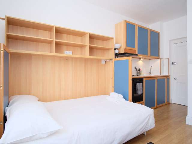 Bright studio apartment to rent in Hammersmith, London