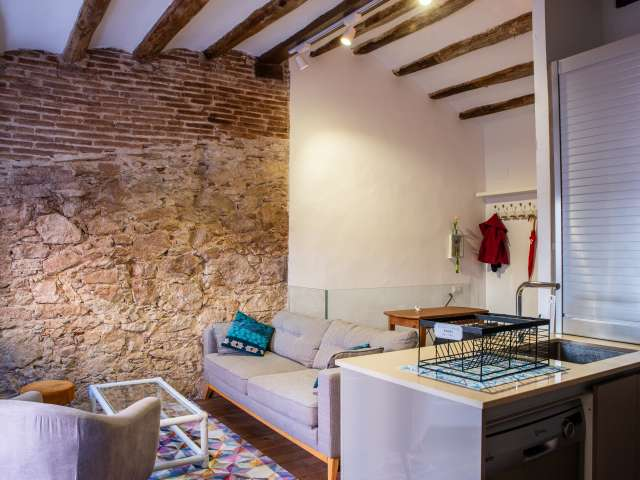 Charming 1-bedroom apartment for rent in Sants, Barcelona