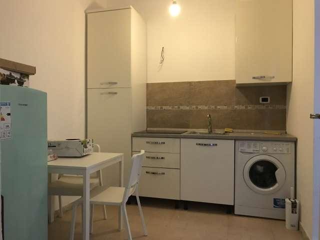 Monolocale in affitto a Appio Latino, Roma