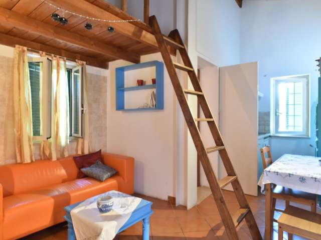 Bellissimo appartamento con 1 camera da letto in affitto a San Giovanni, Roma