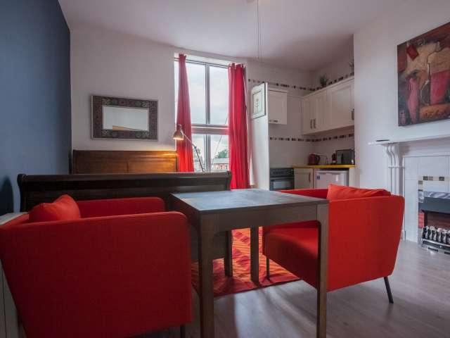 Practical studio flat to rent in Rathgar, Dublin