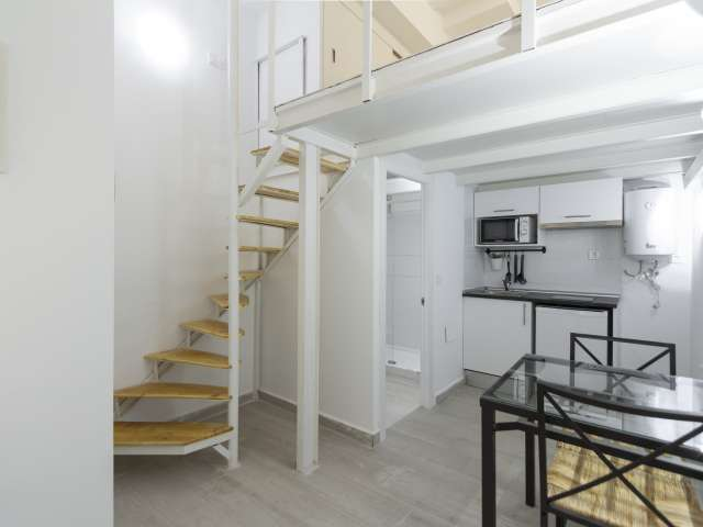 Great studio apartment for rent in Usera, Madrid
