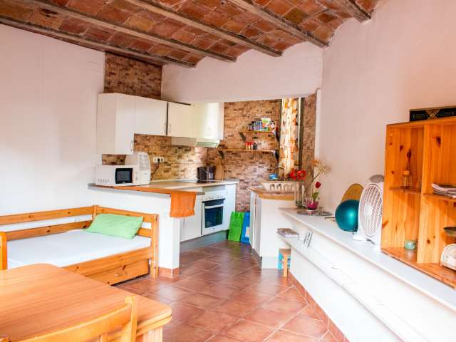 Lovely studio apartment to rent in El Carmel
