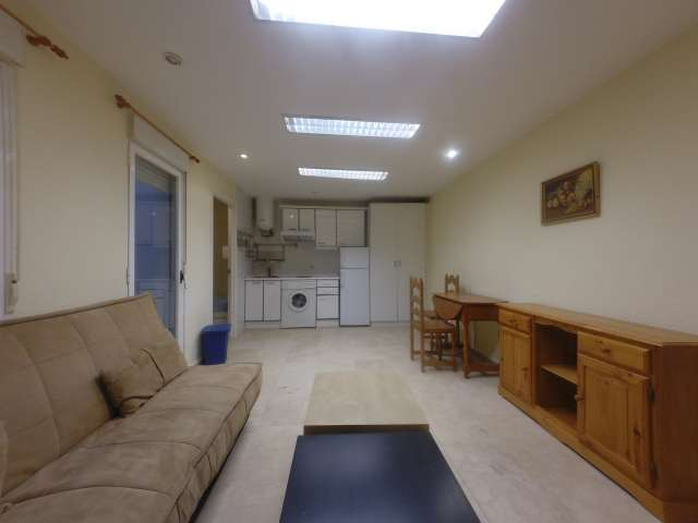 Cozy rented apartment in Chamberi, Madrid