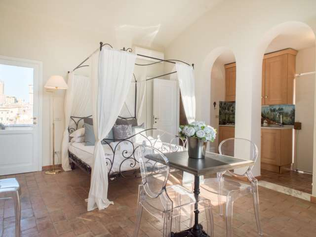 Studio apartment with AC for rent in historic center, Rome
