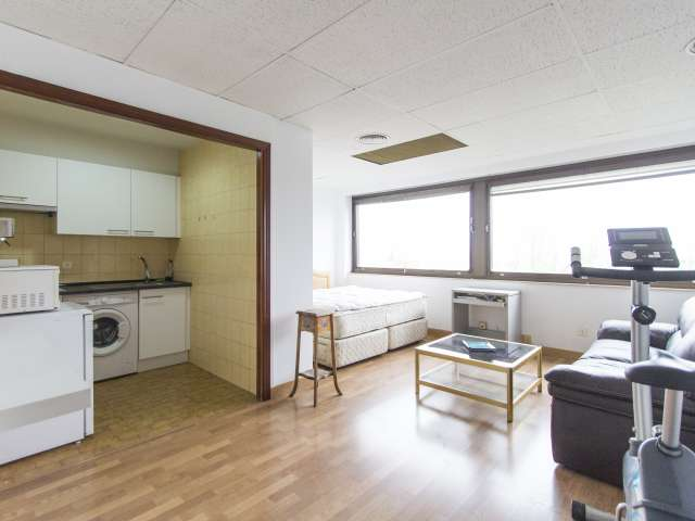 Bright studio for rent in Ciudad Lineal, Madrid