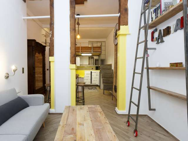Studio-Wohnung zu vermieten in Lavapies, Madrid