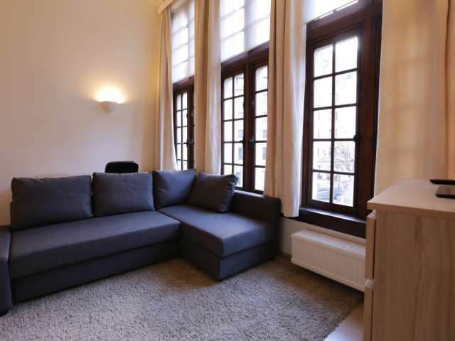 Beau studio à louer dans le centre, Bruxelles