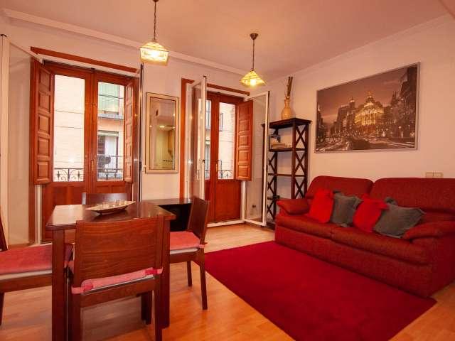 Cozy studio apartment for rent in Madrid Centro