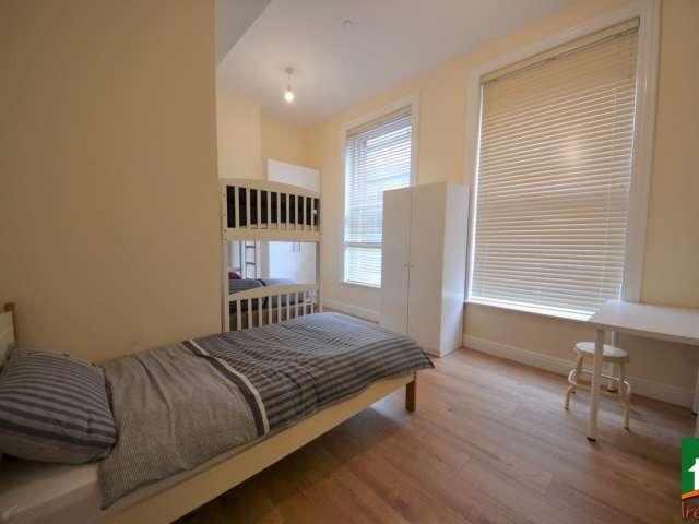 Camas en renta en habitación compartida en piso de 5 habitaciones en Temple Bar