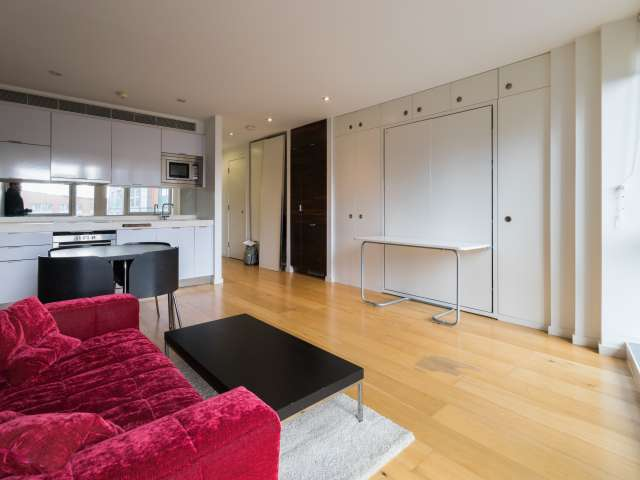 Luxury studio flat for rent near Canary Wharf, London