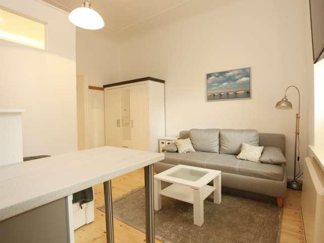 Studio apartment for rent in Tempelhof-Schöneberg, Berlin