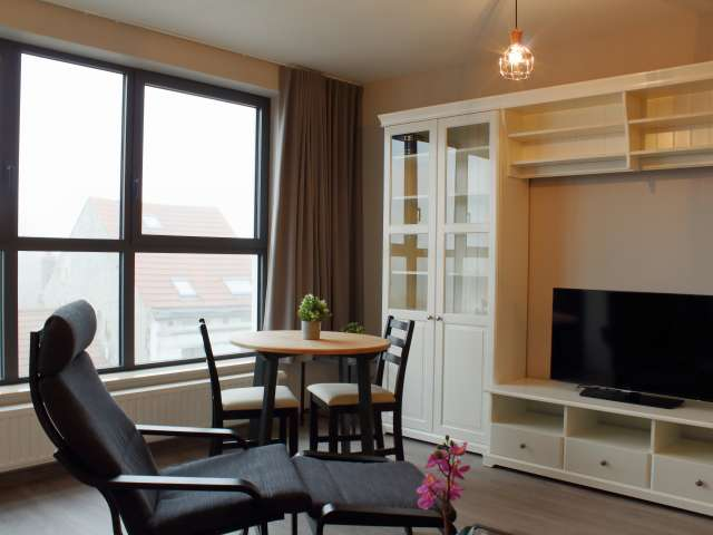 Sunny studio apartment for rent in Anderlecht, Brussels