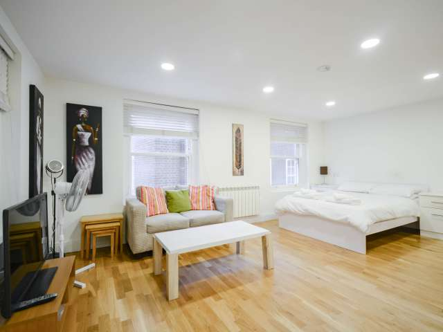 Studio apartment to rent in City of London, London