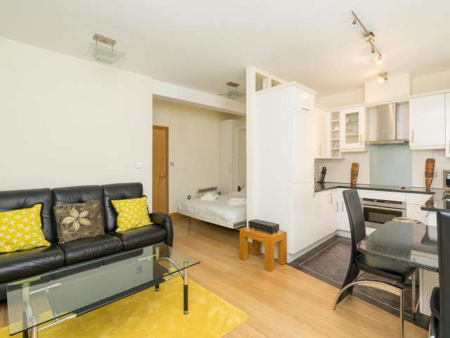 Modern and bright studio to rent in City of London