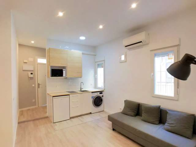 Cool studio apartment for rent in Tetuán, Madrid