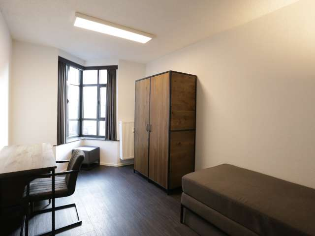 Picturesque room in apartment in Saint Gilles, Brussels