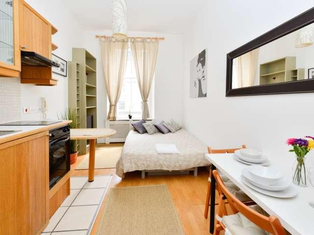 Lovely studio apartment to rent in Pimlico, London.