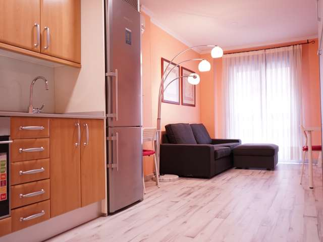 Studio apartment for rent in Ciudad Lineal, Madrid