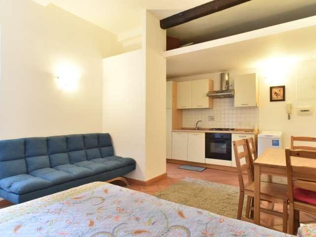 Confortevole appartamento monolocale in affitto a Trastevere, Roma