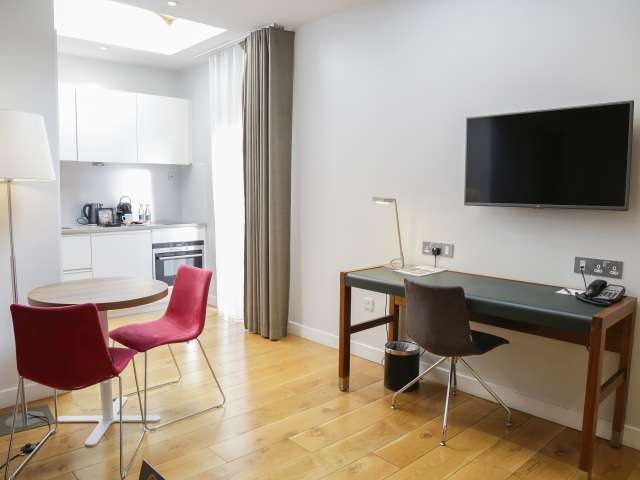Serviced Studio apartment to rent in Ballsbridge, Dublin
