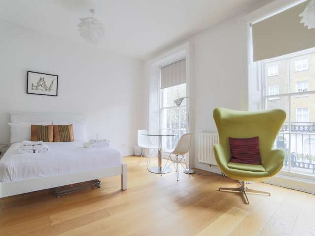 Studio apartment to rent in City of Westminster, London