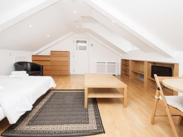 Bright and cosy studio for rent in Hammersmith, London