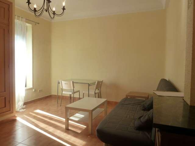 Small studio apartment for rent in Retiro, Madrid