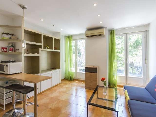 Studio appartement à louer à Trafalgar, Madrid
