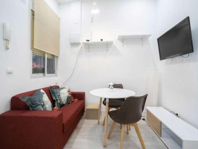 Studio apartment for rent in Puerta del Angel, Madrid