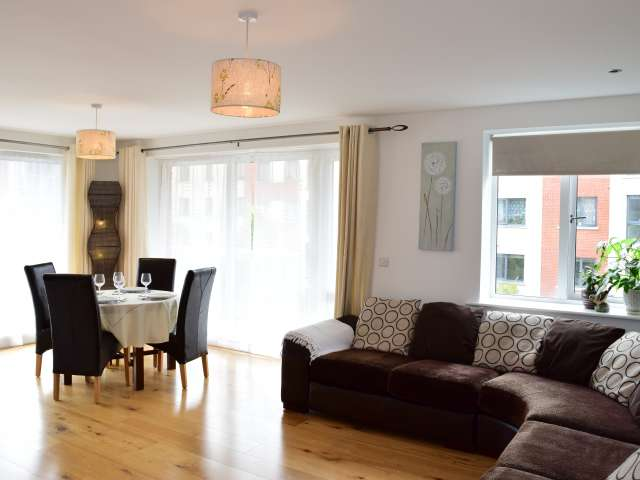 Modern 2-bedroom apartment to rent in Lucan
