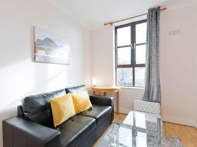 Appartement 1 chambre à louer à Dublin 1