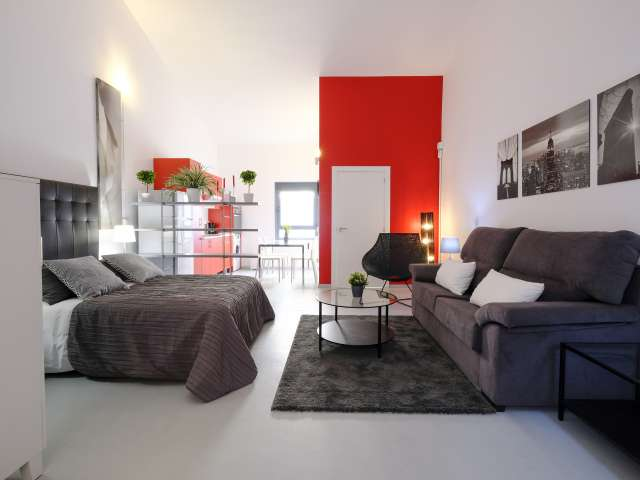 Chic studio apartment for rent in Ciudad Lineal, Madrid
